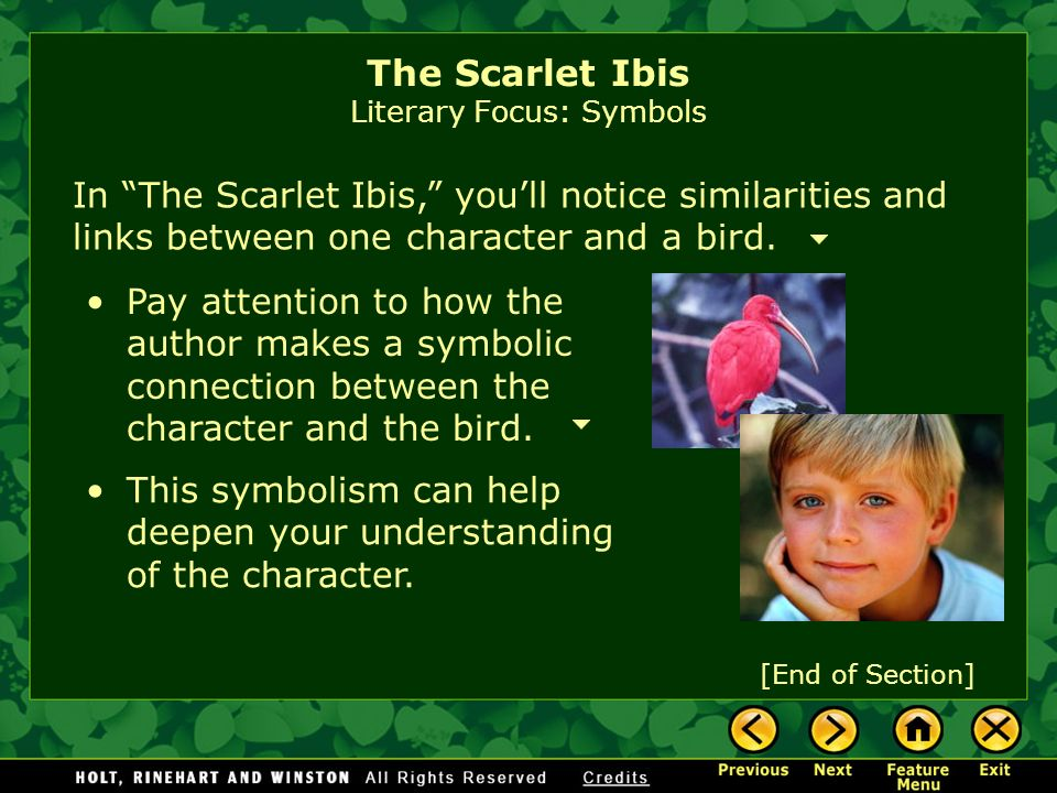 The Scarlet Ibis Literary Focus: Symbols A symbol is an object, event, person, or animal that stands for something more than itself. Symbols are all a