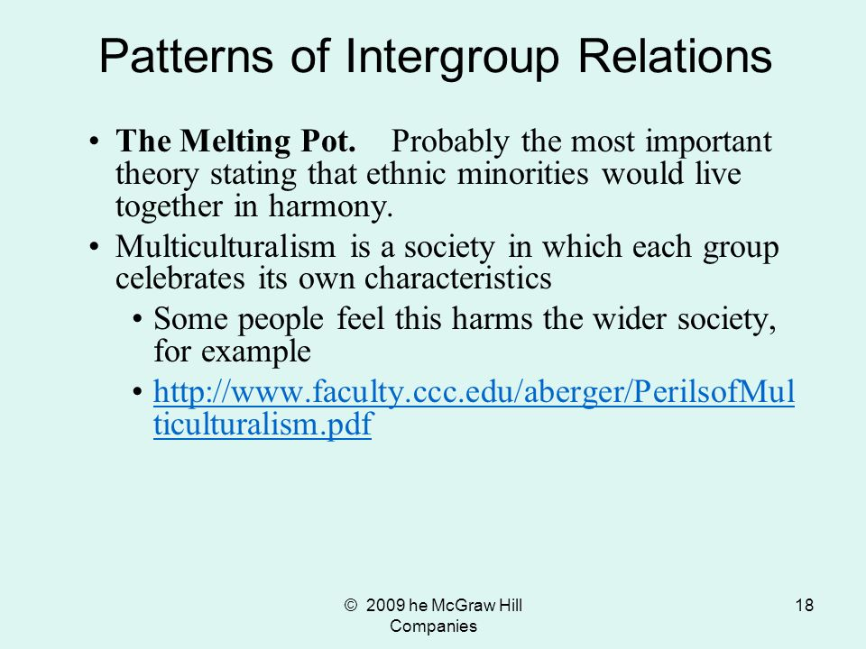 © 2009 he McGraw Hill Companies 18 The Melting Pot. Probably the most important theory stating that ethnic minorities would live together in harmony.