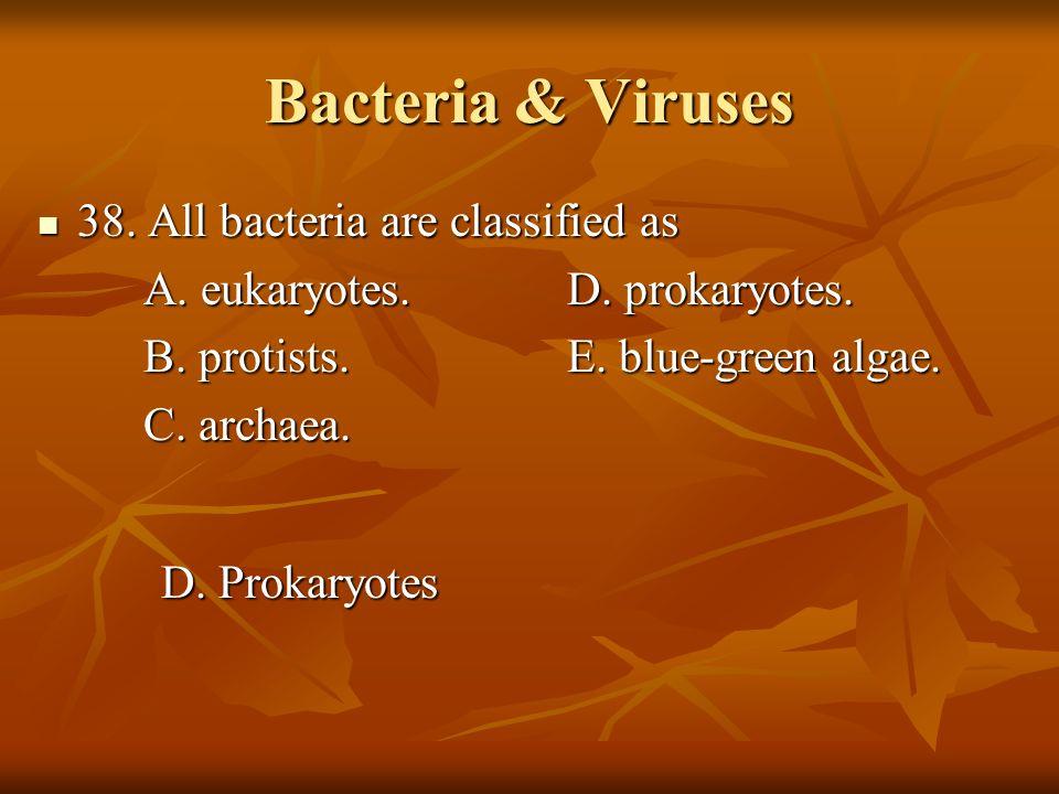 Bacteria & Viruses 38. All bacteria are classified as 38. All bacteria are classified as A. eukaryotes.D. prokaryotes. B. protists.E. blue-green algae
