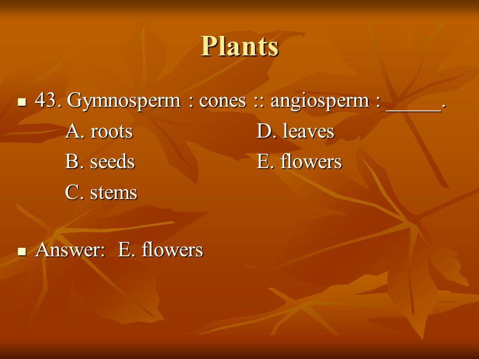 Plants 43. Gymnosperm : cones :: angiosperm : _____. 43. Gymnosperm : cones :: angiosperm : _____. A. rootsD. leaves B. seedsE. flowers C. stems Answe