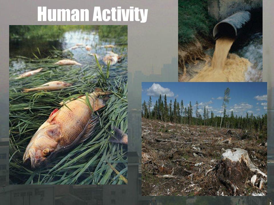 1 Human Activity