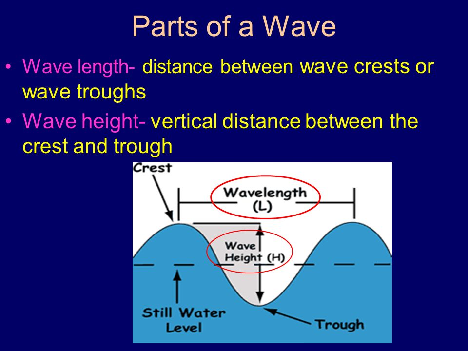 Parts of a Wave Wave length- distance between wave crests or wave troughs Wave height- vertical distance between the crest and trough