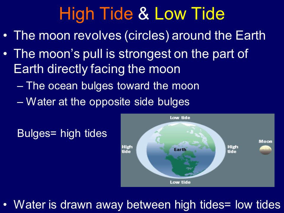 High Tide & Low Tide The moon revolves (circles) around the Earth The moons pull is strongest on the part of Earth directly facing the moon –The ocean