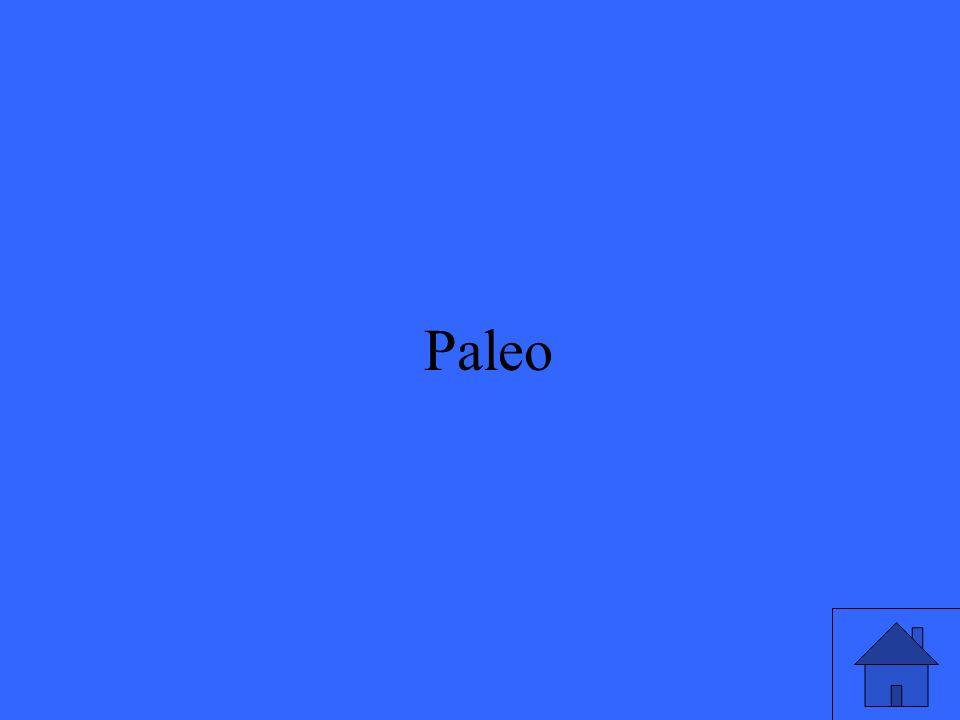 45 Paleo