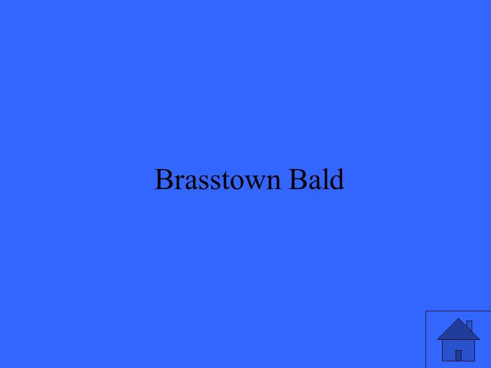 5 Brasstown Bald