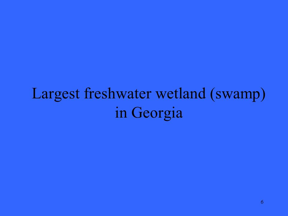 6 Largest freshwater wetland (swamp) in Georgia