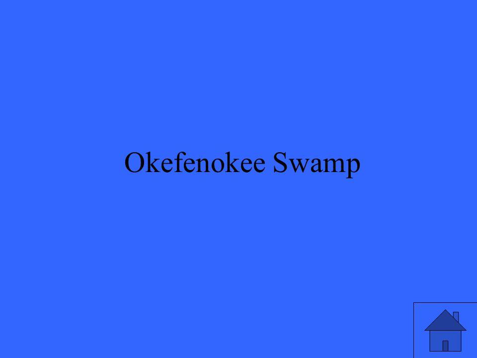 7 Okefenokee Swamp