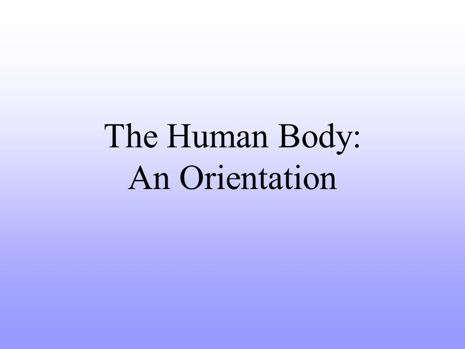 Overview of Anatomy and Physiology Anatomy – the study of the structure of body parts and their relationships to one another How is it constructed?