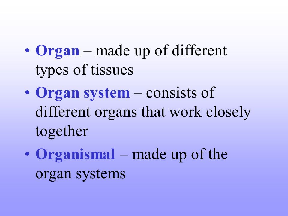Organ – made up of different types of tissues Organ system – consists of different organs that work closely together Organismal – made up of the organ