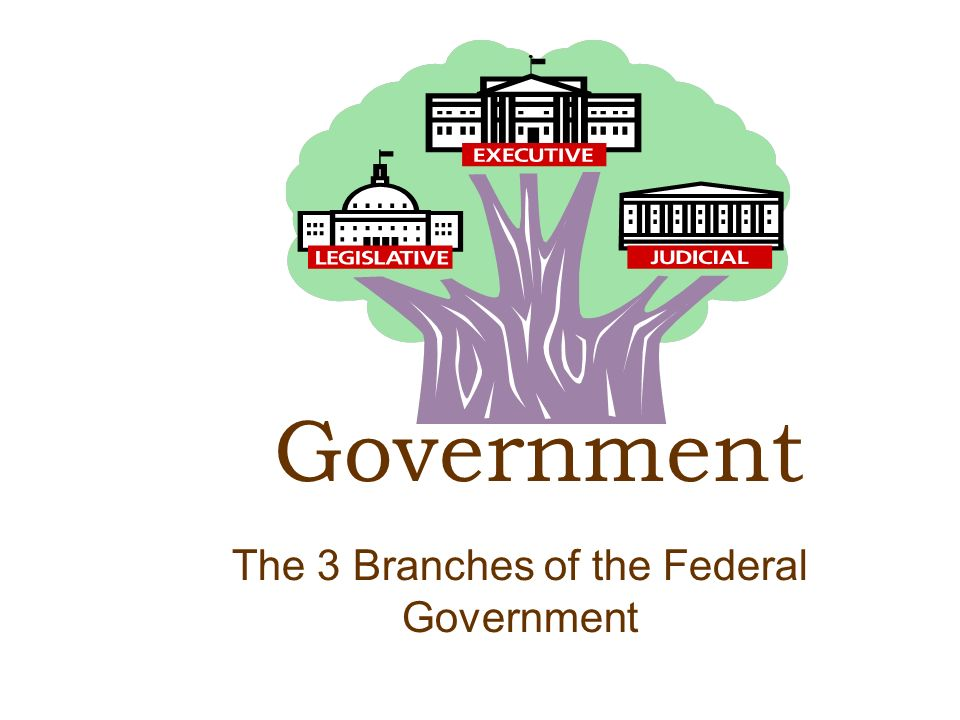 The 3 Branches of the Federal Government Government