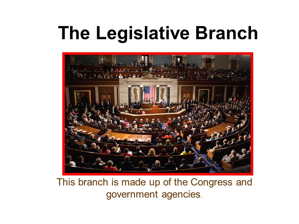 The Legislative Branch This branch is made up of the Congress and government agencies.
