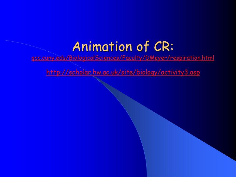 Animation of CR: qcc.cuny.edu/BiologicalSciences/Faculty/DMeyer/respiration.html http://scholar.hw.ac.uk/site/biology/activity3.asp qcc.cuny.edu/Biolo