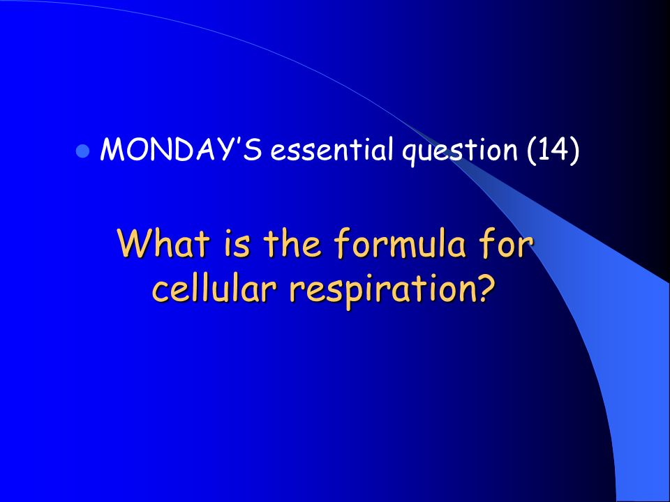 What is the formula for cellular respiration MONDAYS essential question (14)