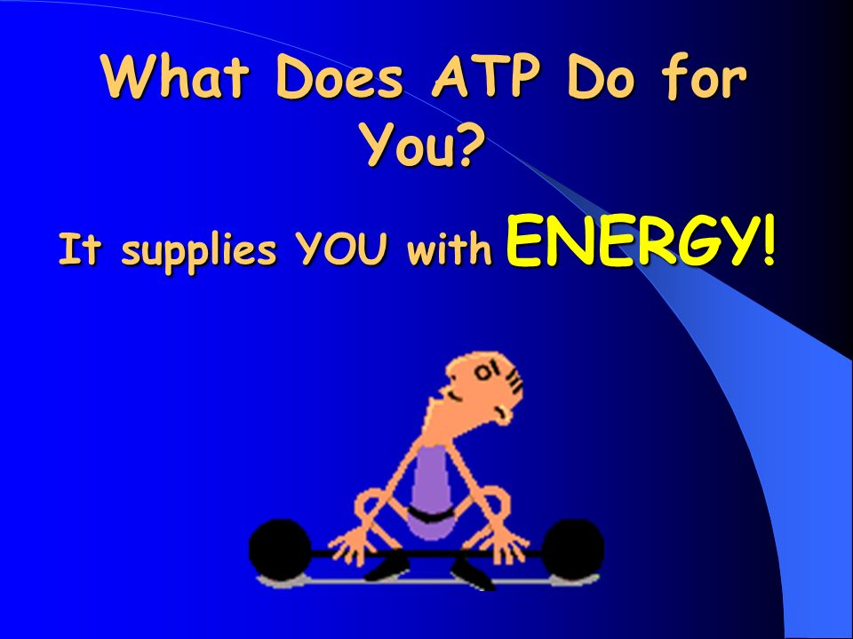 What Does ATP Do for You It supplies YOU with ENERGY!