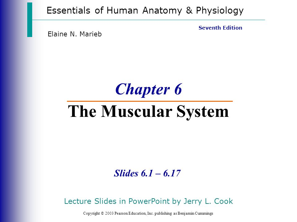 Essentials of Human Anatomy & Physiology Copyright © 2003 Pearson Education, Inc. publishing as Benjamin Cummings Slides 6.1 – 6.17 Seventh Edition El