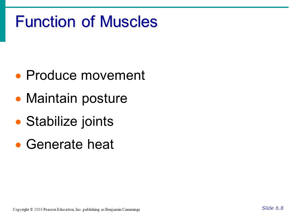 Function of Muscles Slide 6.8 Copyright © 2003 Pearson Education, Inc. publishing as Benjamin Cummings Produce movement Maintain posture Stabilize joi