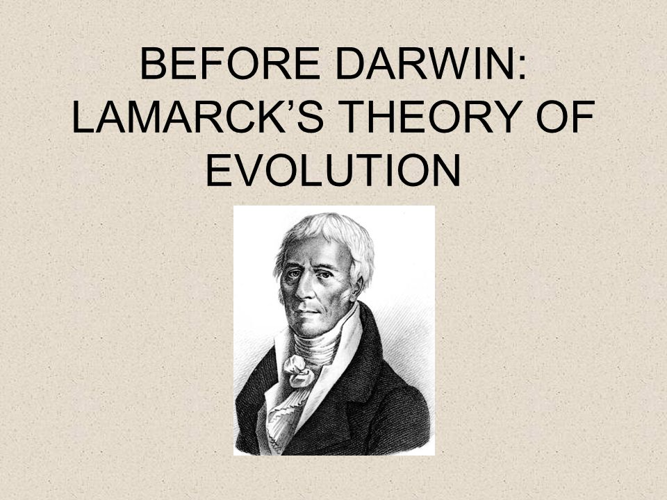 BEFORE DARWIN: LAMARCKS THEORY OF EVOLUTION