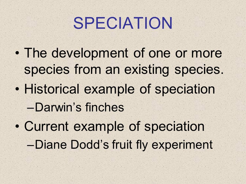 SPECIATION The development of one or more species from an existing species. Historical example of speciation –Darwins finches Current example of speci