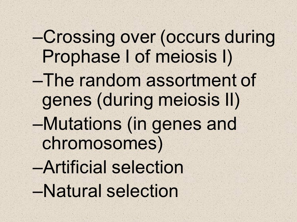 –Crossing over (occurs during Prophase I of meiosis I) –The random assortment of genes (during meiosis II) –Mutations (in genes and chromosomes) –Arti