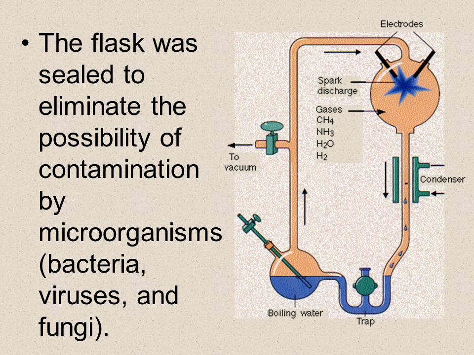 The flask was sealed to eliminate the possibility of contamination by microorganisms (bacteria, viruses, and fungi).