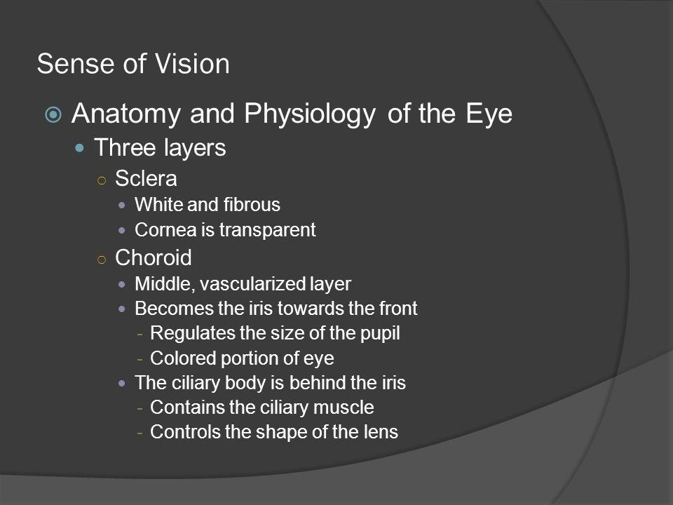 Sense of Vision Anatomy and Physiology of the Eye Three layers Sclera White and fibrous Cornea is transparent Choroid Middle, vascularized layer Becom