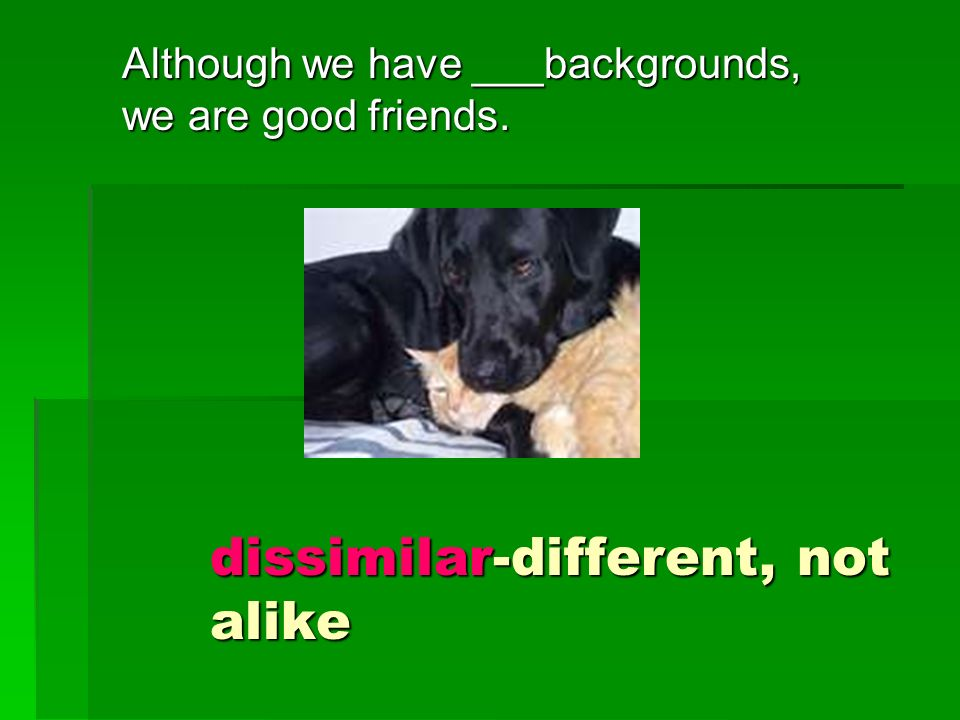 Although we have ___backgrounds, we are good friends. dissimilar-different, not alike