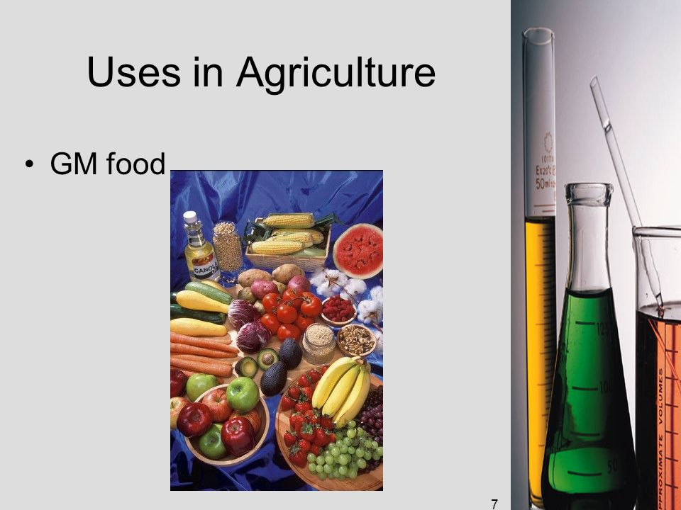 7 Uses in Agriculture GM food