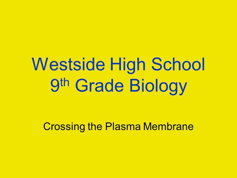Westside High School 9 th Grade Biology Crossing the Plasma Membrane