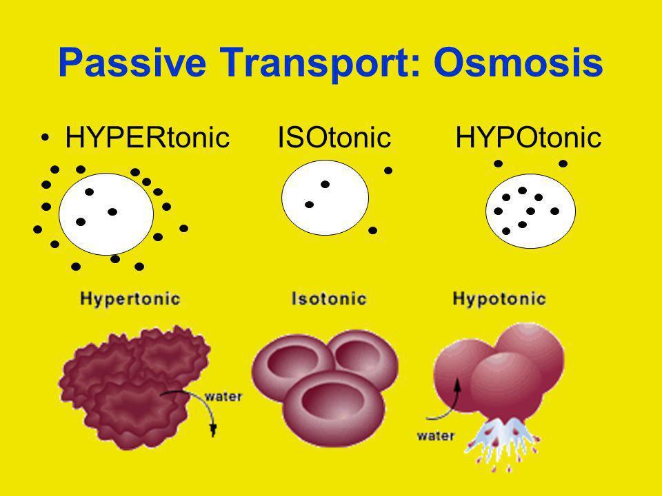 Passive Transport: Osmosis HYPERtonic ISOtonic HYPOtonic