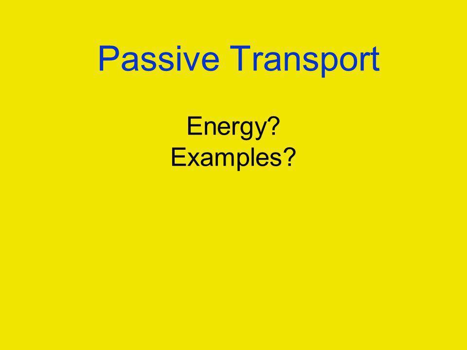 Passive Transport Energy? Examples?