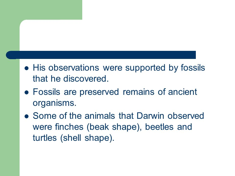 His observations were supported by fossils that he discovered. Fossils are preserved remains of ancient organisms. Some of the animals that Darwin obs
