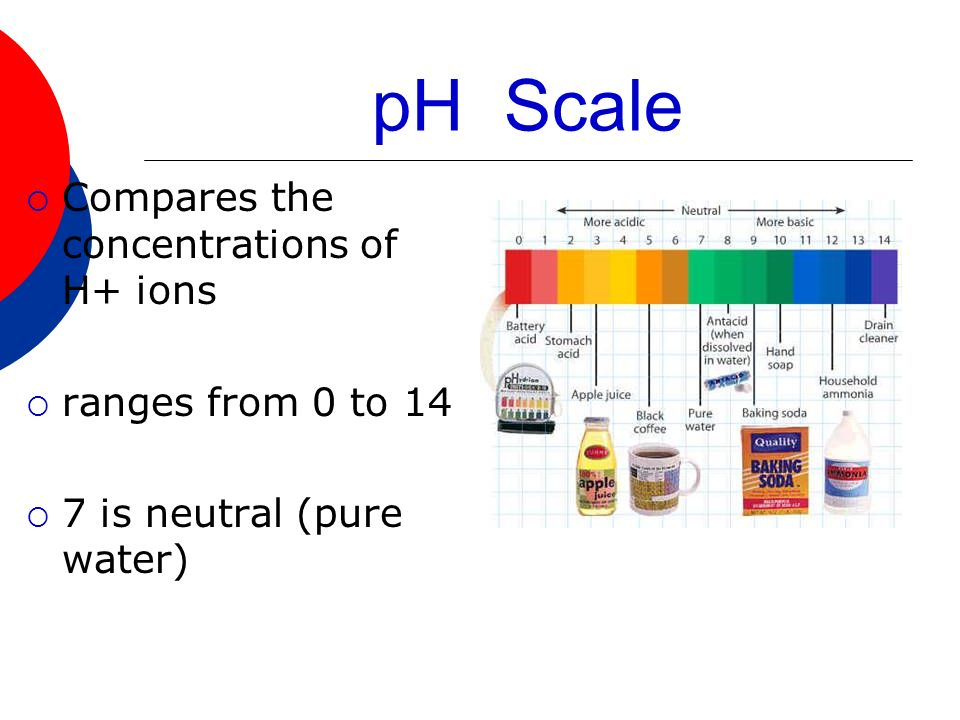 pH Scale Compares the concentrations of H+ ions ranges from 0 to 14 7 is neutral (pure water)