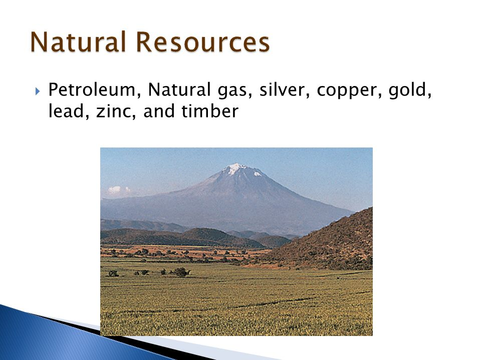 Petroleum, Natural gas, silver, copper, gold, lead, zinc, and timber