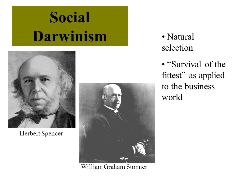 Natural selection Survival of the fittest as applied to the business world Social Darwinism Herbert Spencer William Graham Sumner