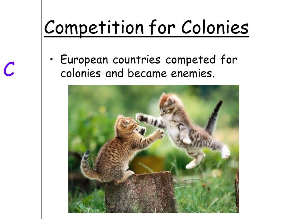 Competition for Colonies C European countries competed for colonies and became enemies.