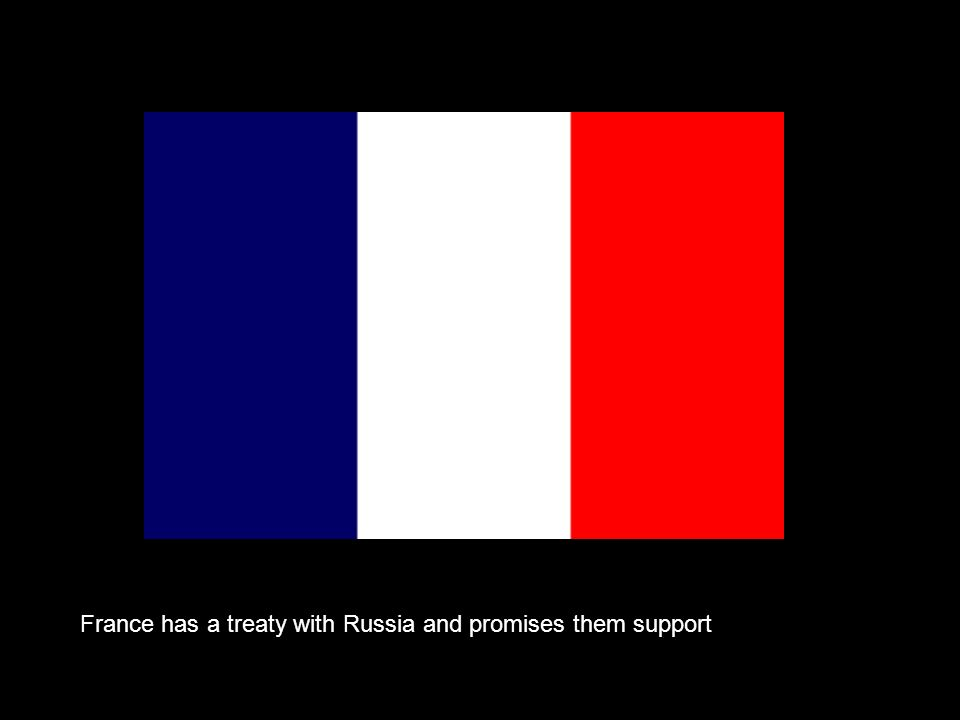 France has a treaty with Russia and promises them support