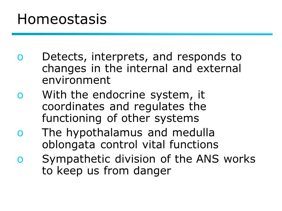 Homeostasis oDetects, interprets, and responds to changes in the internal and external environment oWith the endocrine system, it coordinates and regulates the functioning of other systems oThe hypothalamus and medulla oblongata control vital functions oSympathetic division of the ANS works to keep us from danger