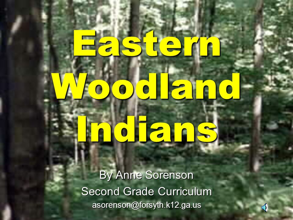 Eastern Woodland Indians By Anne Sorenson Second Grade Curriculum asorenson@forsyth.k12.ga.us