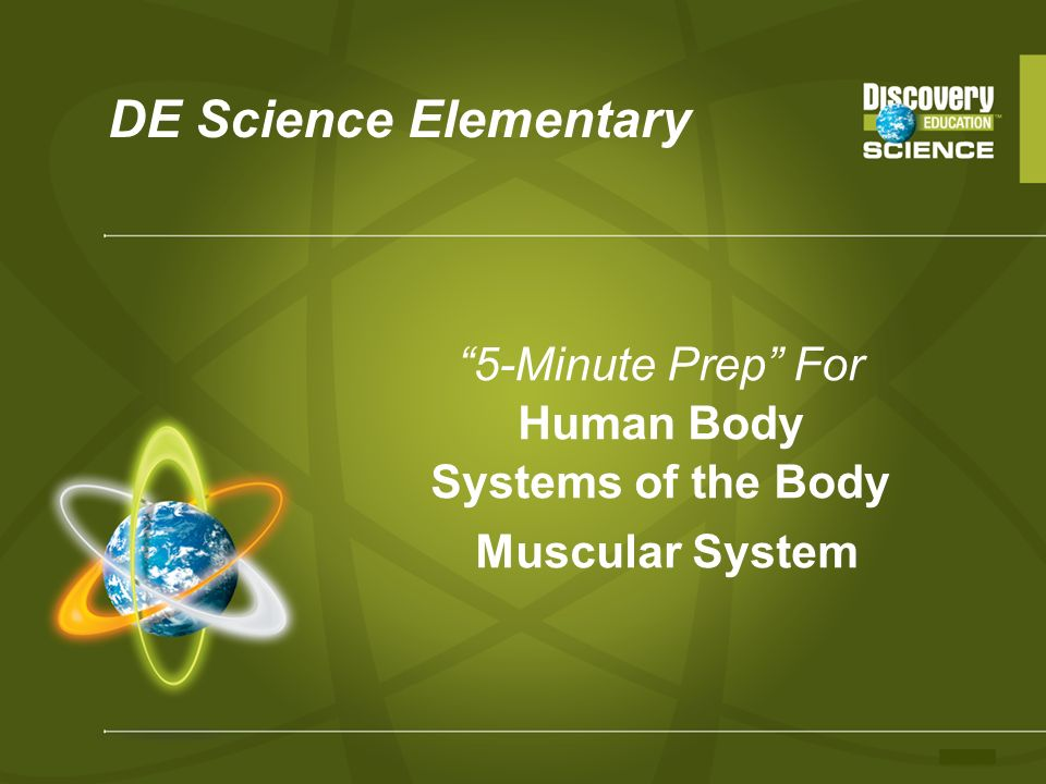 DE Science Elementary 5-Minute Prep For Human Body Systems of the Body Muscular System