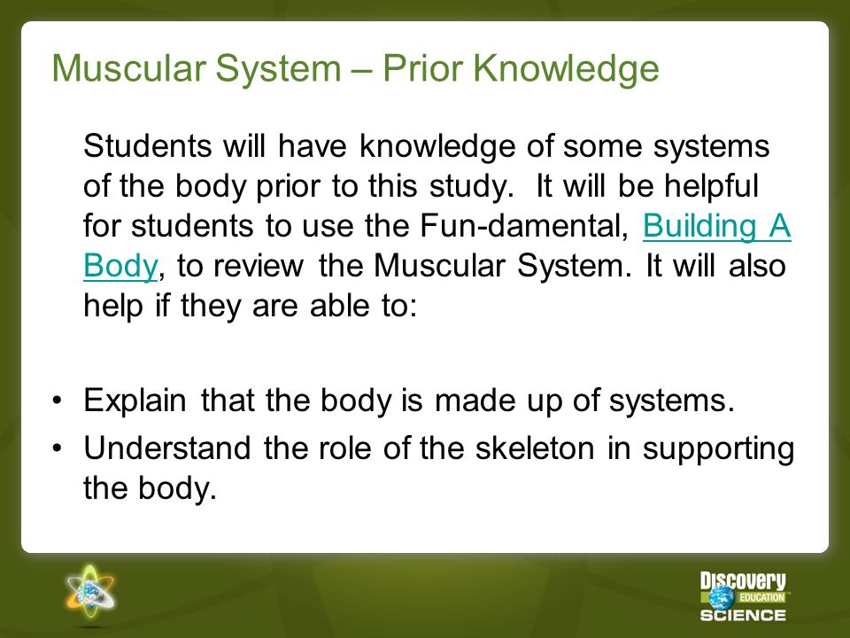 Muscular System – Prior Knowledge Students will have knowledge of some systems of the body prior to this study. It will be helpful for students to use