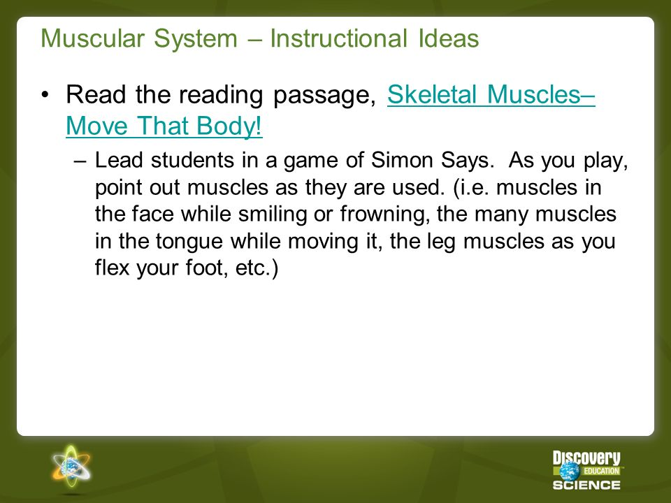Muscular System – Instructional Ideas Watch the Video Segment, Involuntary Muscular System.Involuntary Muscular System –Teach students how to take their pulse.