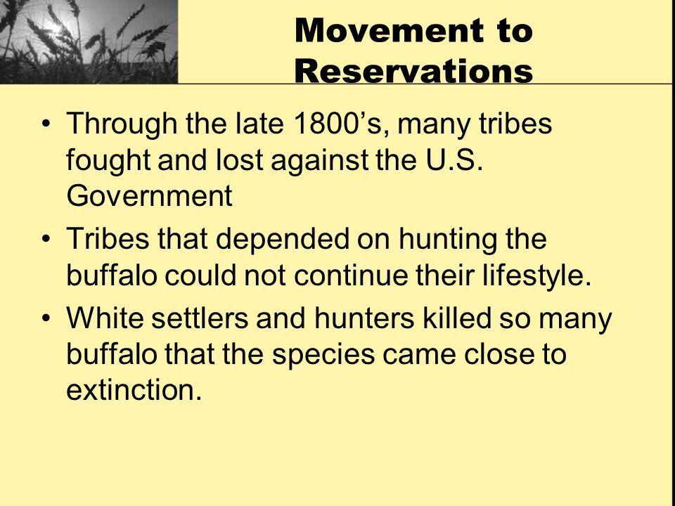 Movement to Reservations Through the late 1800s, many tribes fought and lost against the U.S. Government Tribes that depended on hunting the buffalo c