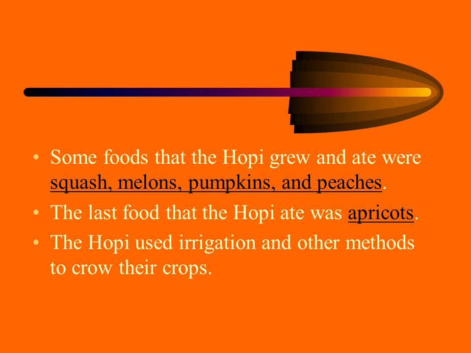 The variety of foods One food that was common in the Hopi was corn. There was 24 different kinds of corn like blue and white. They used the corn for t