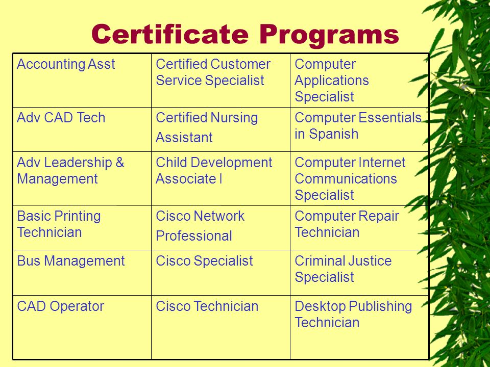 Certificate Programs Desktop Publishing Technician Cisco TechnicianCAD Operator Criminal Justice Specialist Cisco SpecialistBus Management Computer Repair Technician Cisco Network Professional Basic Printing Technician Computer Internet Communications Specialist Child Development Associate I Adv Leadership & Management Computer Essentials in Spanish Certified Nursing Assistant Adv CAD Tech Computer Applications Specialist Certified Customer Service Specialist Accounting Asst