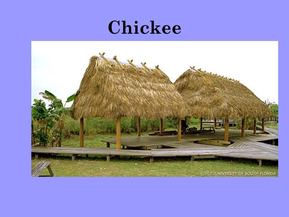 Chickee