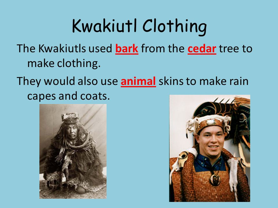 Kwakiutl Clothing The Kwakiutls used bark from the cedar tree to make clothing. They would also use animal skins to make rain capes and coats.