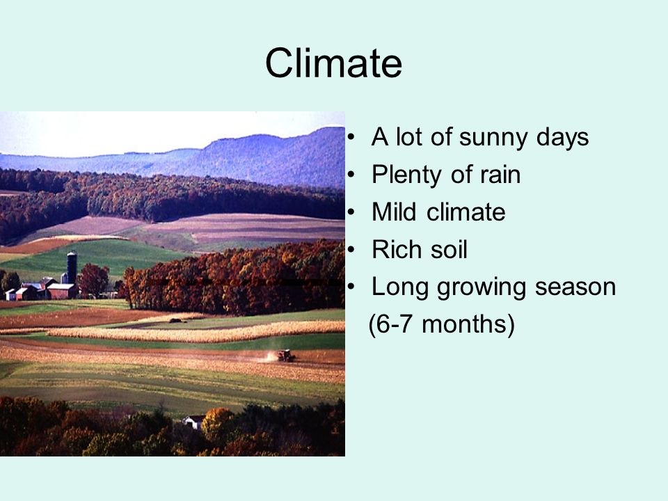 Climate A lot of sunny days Plenty of rain Mild climate Rich soil Long growing season (6-7 months)