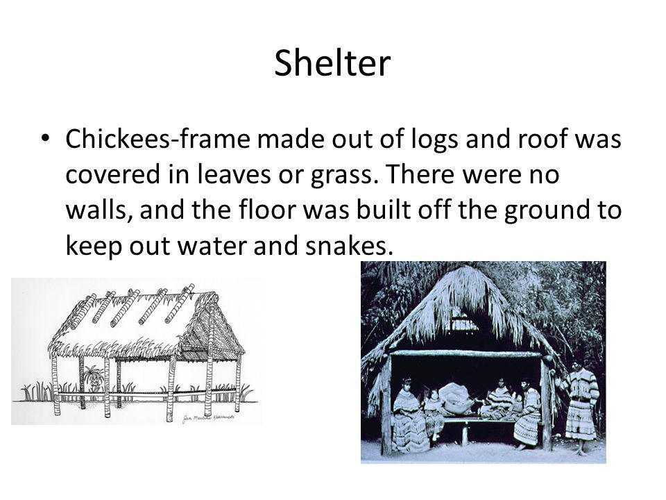 Shelter Chickees-frame made out of logs and roof was covered in leaves or grass. There were no walls, and the floor was built off the ground to keep o
