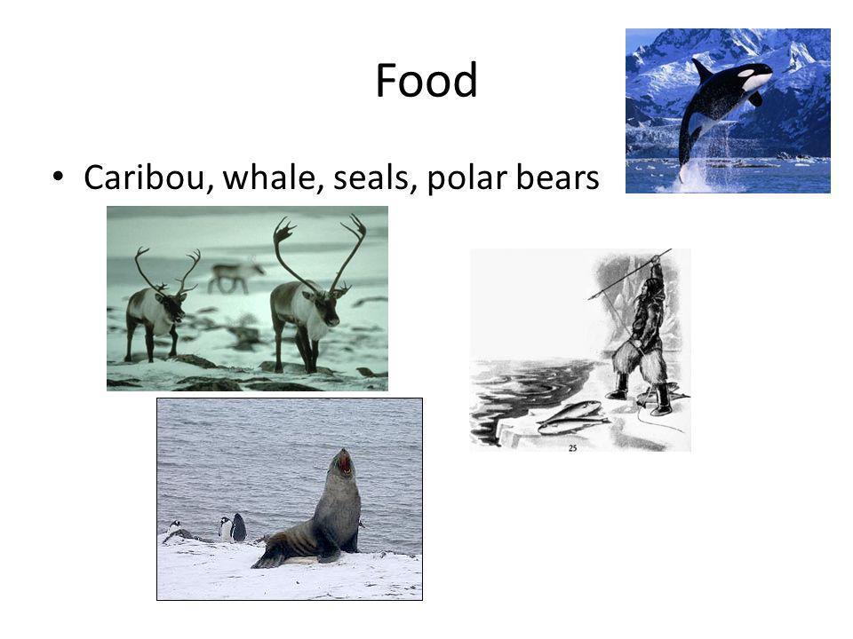 Food Caribou, whale, seals, polar bears