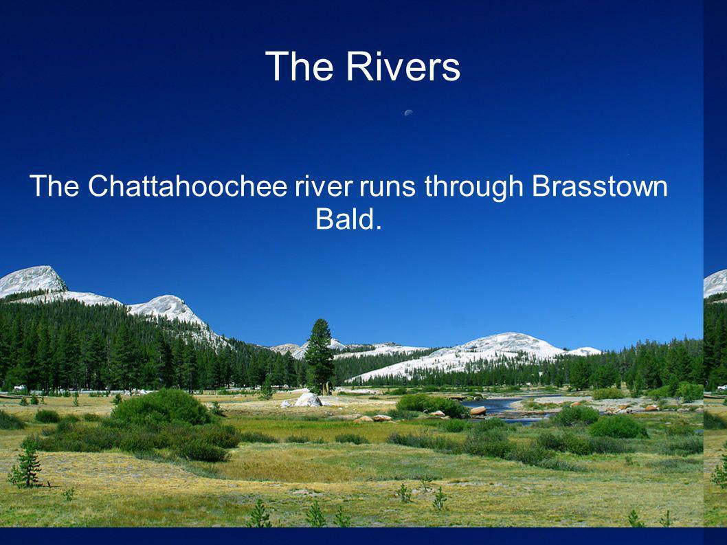 The Rivers The Chattahoochee river runs through Brasstown Bald.